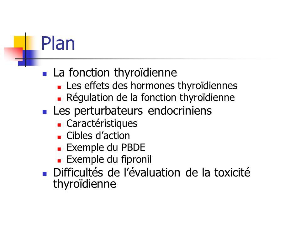 Plan La fonction thyroïdienne Les effets des hormones thyroïdiennes Régulation de la fonction thyroïdienne Les perturbateurs endocriniens Caractéristi