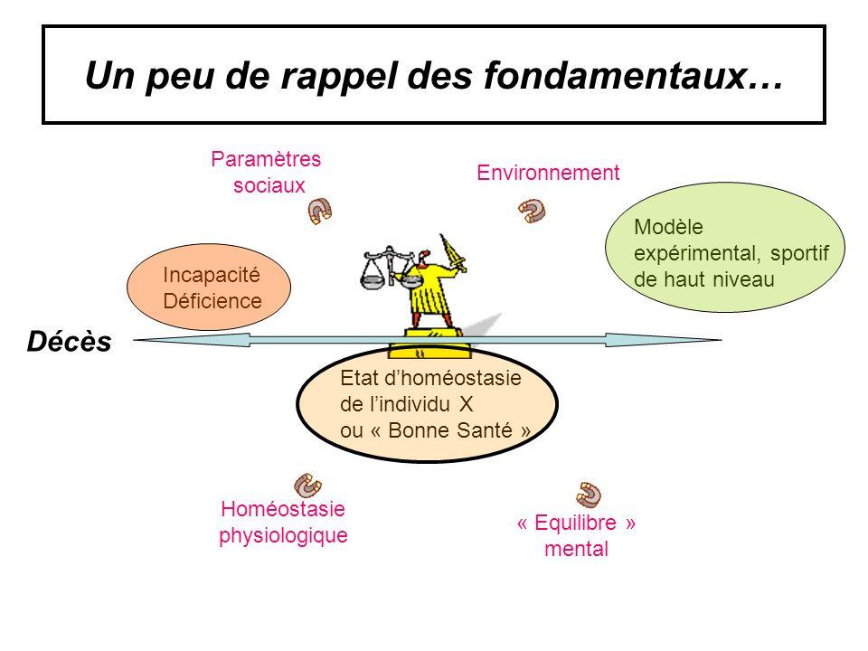 H nassif, N El Helou, JF Toussaint adsp juin 2009 Discordance entre lévolution de la consommation et des dépenses énegétiques