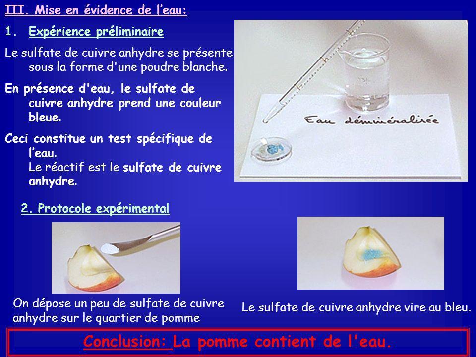 TP : Mise en évidence de quelques espèces chimiques présentes dans les produits naturels