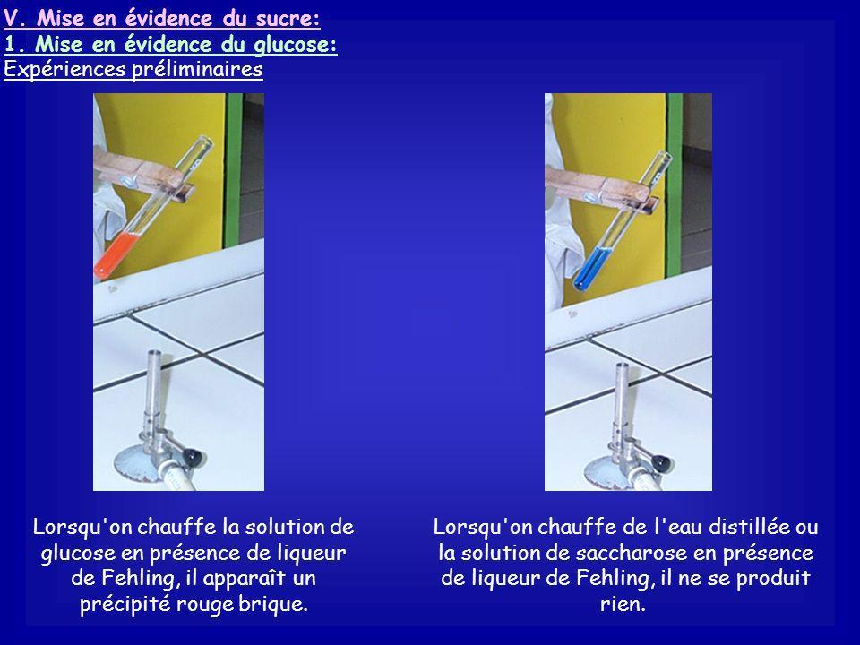 2. Protocole expérimental On dépose un peu de sulfate de cuivre anhydre sur le quartier de pomme Le sulfate de cuivre anhydre vire au bleu. Conclusion