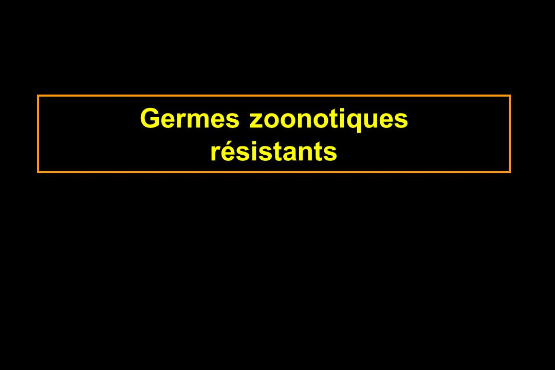 Germes zoonotiques résistants