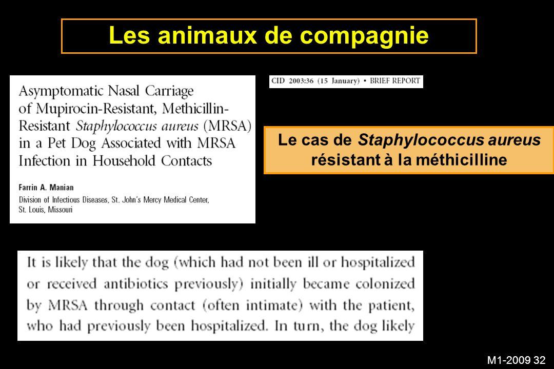 M1-2009 32 Les animaux de compagnie Le cas de Staphylococcus aureus résistant à la méthicilline