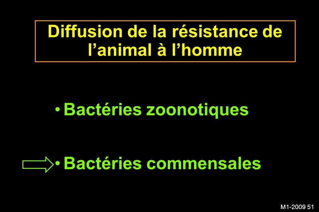 M1-2009 51 Diffusion de la résistance de lanimal à lhomme Bactéries zoonotiques Bactéries commensales