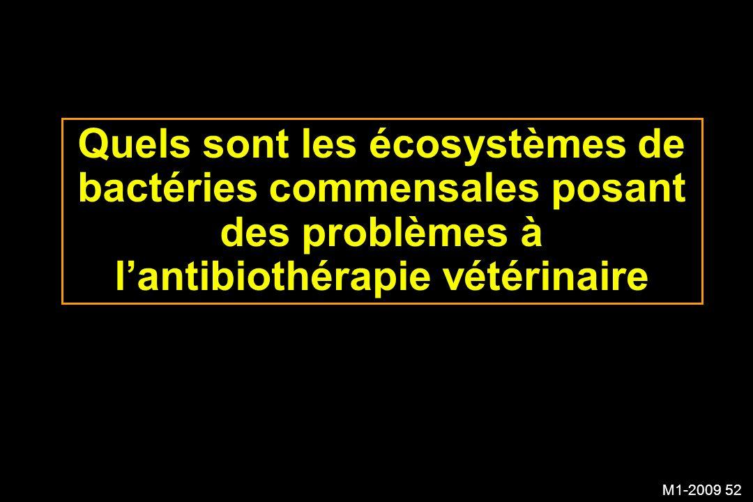 M1-2009 52 Quels sont les écosystèmes de bactéries commensales posant des problèmes à lantibiothérapie vétérinaire