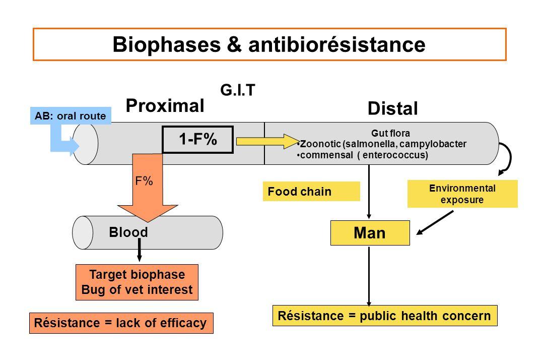 Biophases & antibiorésistance G.I.T Proximal Distal 1-F% Résistance = lack of efficacy Résistance = public health concern Target biophase Bug of vet i