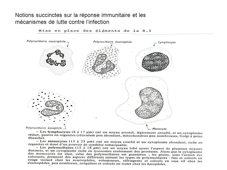 Notions succinctes sur la réponse immunitaire et les mécanismes de lutte contre linfection