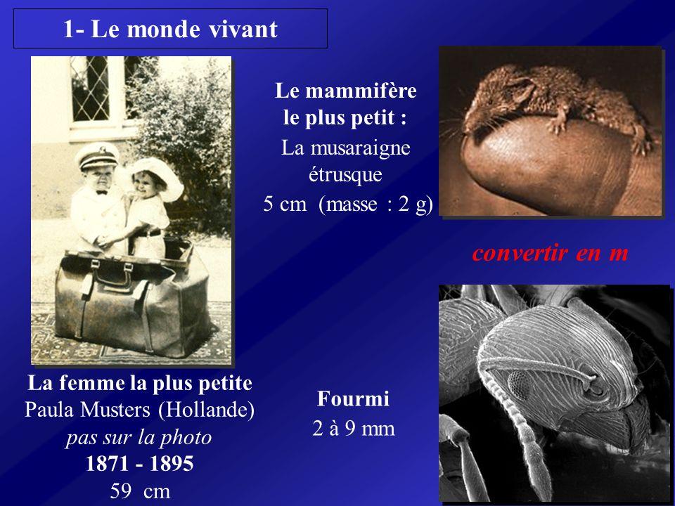 La femme la plus petite Paula Musters (Hollande) pas sur la photo 1871 - 1895 59 cm Le mammifère le plus petit : La musaraigne étrusque 5 cm (masse :