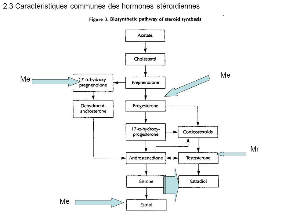 Me Mr Me 2.3 Caractéristiques communes des hormones stéroïdiennes