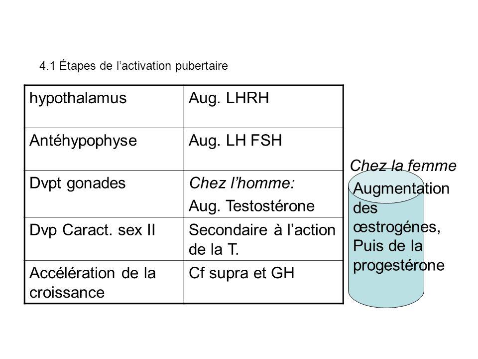 4.1 Étapes de lactivation pubertaire hypothalamusAug. LHRH AntéhypophyseAug. LH FSH Dvpt gonadesChez lhomme: Aug. Testostérone Dvp Caract. sex IISecon