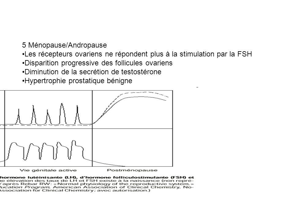 5 Ménopause/Andropause Les récepteurs ovariens ne répondent plus à la stimulation par la FSH Disparition progressive des follicules ovariens Diminutio