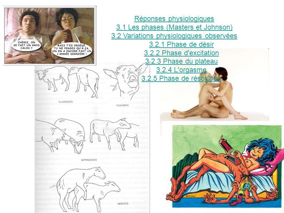 Réponses physiologiques 3.1 Les phases (Masters et Johnson) 3.2 Variations physiologiques observées 3.2.1 Phase de désir 3.2.2 Phase d'excitation 3.2.