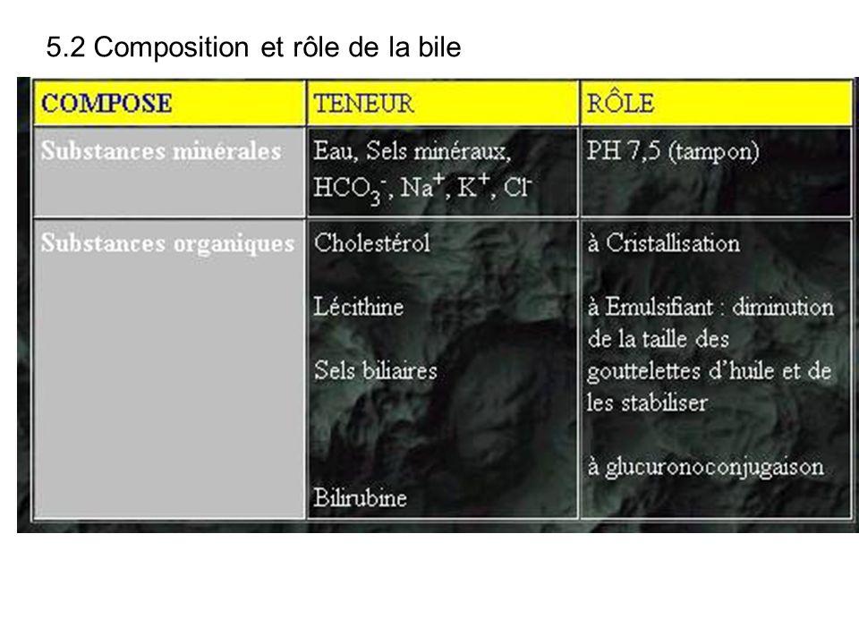 5.2 Composition et rôle de la bile