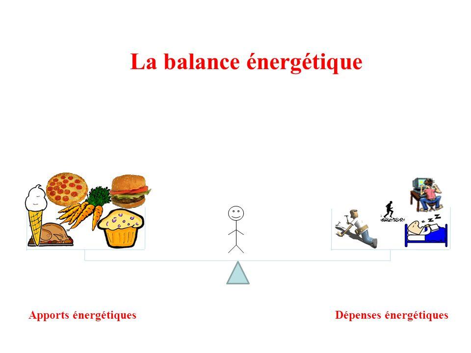 La balance énergétique Apports énergétiquesDépenses énergétiques