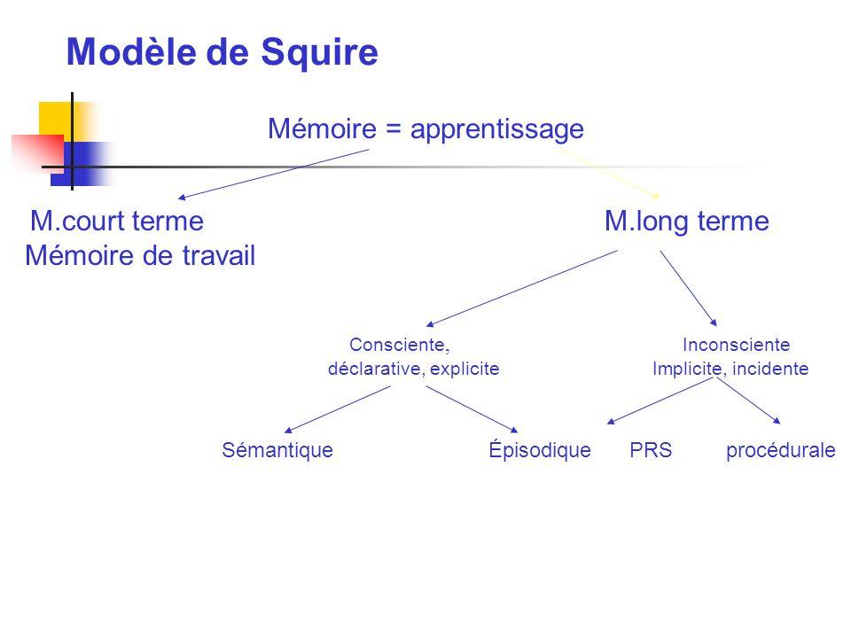 Modèle de Squire Mémoire = apprentissage M.court termeM.long terme Mémoire de travail Consciente, Inconsciente déclarative, explicite Implicite, incid
