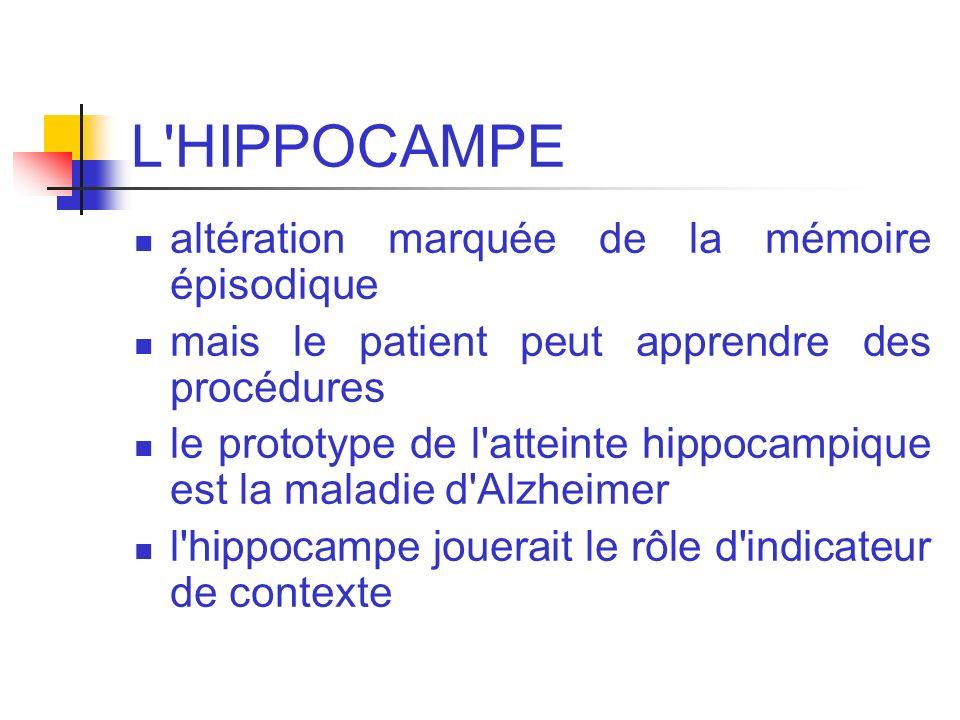 L'HIPPOCAMPE altération marquée de la mémoire épisodique mais le patient peut apprendre des procédures le prototype de l'atteinte hippocampique est la