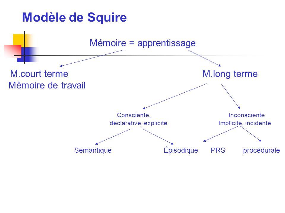 Modèle de Squire Mémoire = apprentissage M. court termeM.long terme Mémoire de travail Consciente, Inconsciente déclarative, explicite Implicite, inci