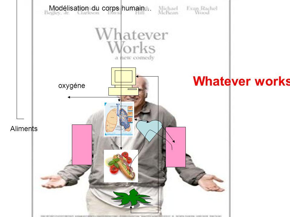 oxygéne Aliments Whatever works Modélisation du corps humain…