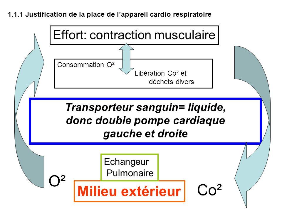 Effort: contraction musculaire Consommation O² Libération Co² et déchets divers Milieu extérieur O² Co² Echangeur Pulmonaire Transporteur sanguin= liq