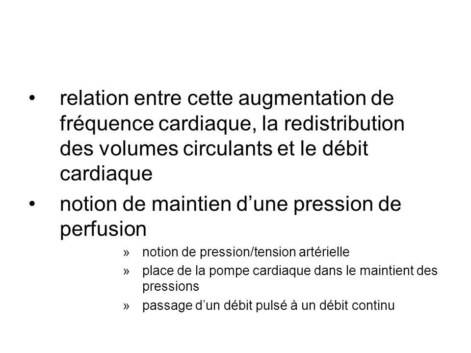 relation entre cette augmentation de fréquence cardiaque, la redistribution des volumes circulants et le débit cardiaque notion de maintien dune press