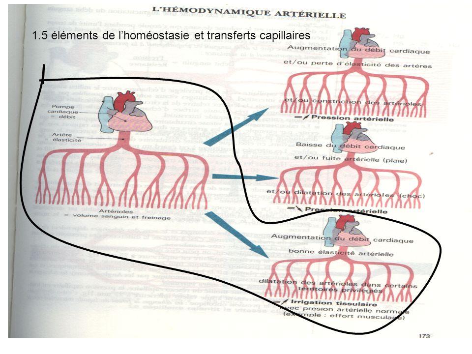 1.5 éléments de lhoméostasie et transferts capillaires