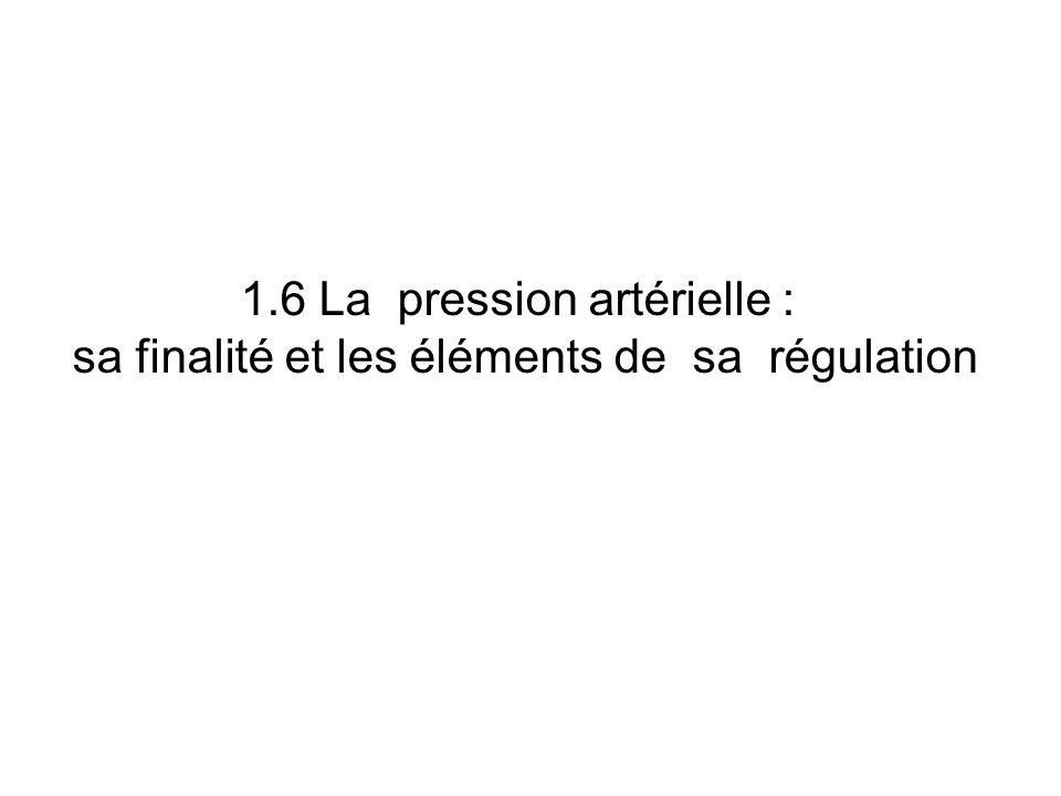 1.6 La pression artérielle : sa finalité et les éléments de sa régulation