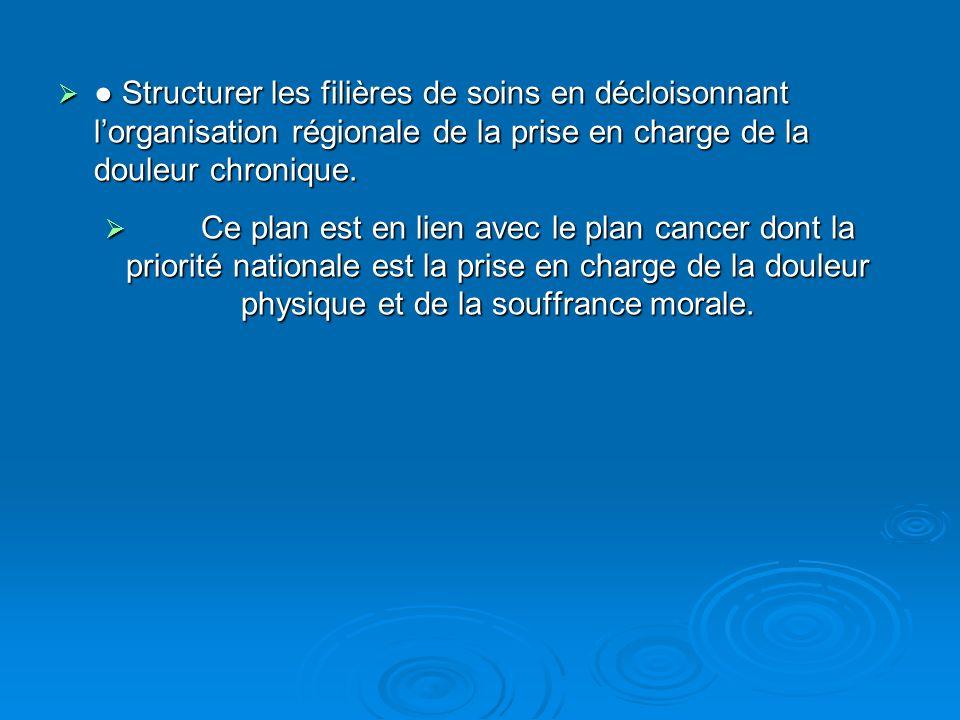 Structurer les filières de soins en décloisonnant lorganisation régionale de la prise en charge de la douleur chronique. Structurer les filières de so