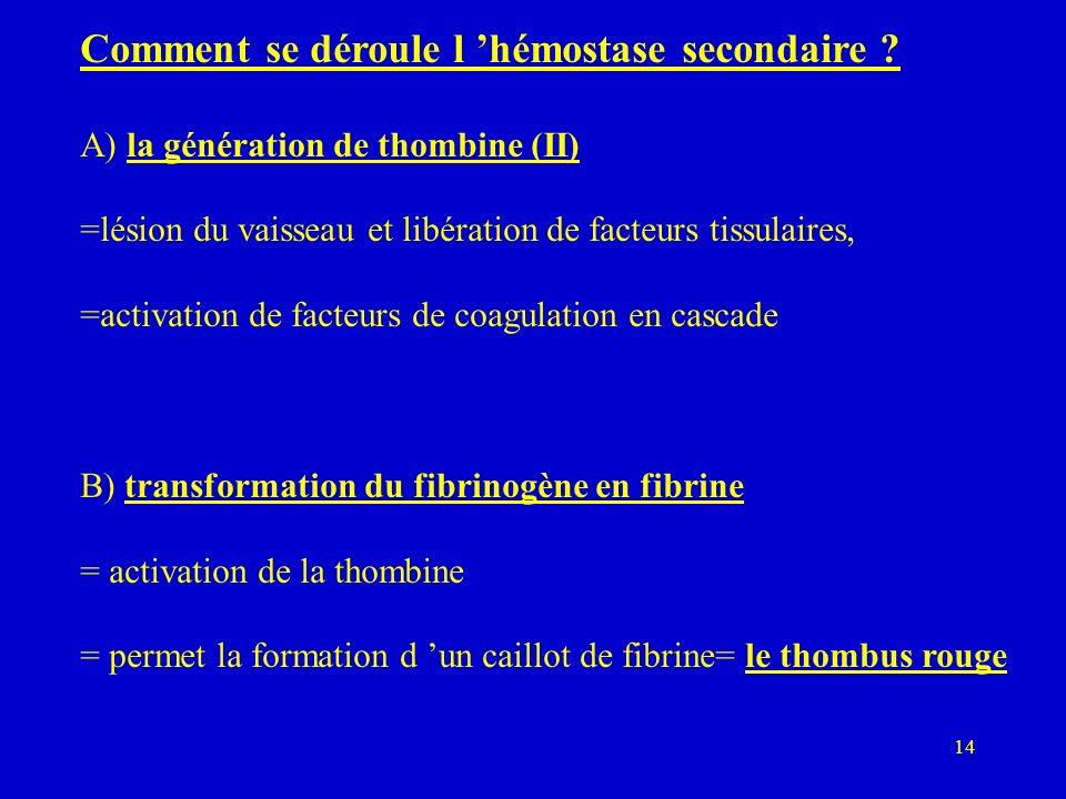 14 Comment se déroule l hémostase secondaire ? A) la génération de thombine (II) =lésion du vaisseau et libération de facteurs tissulaires, =activatio