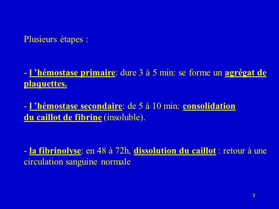 3 Plusieurs étapes : - l hémostase primaire: dure 3 à 5 min: se forme un agrégat de plaquettes. - l hémostase secondaire: de 5 à 10 min: consolidation