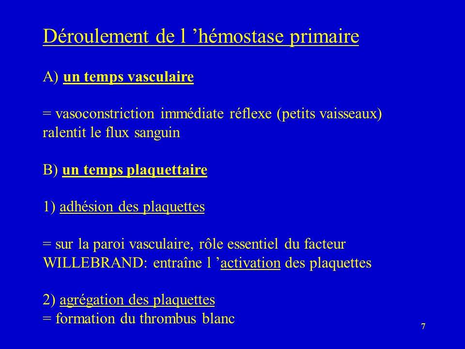 7 Déroulement de l hémostase primaire A) un temps vasculaire = vasoconstriction immédiate réflexe (petits vaisseaux) ralentit le flux sanguin B) un temps plaquettaire 1) adhésion des plaquettes = sur la paroi vasculaire, rôle essentiel du facteur WILLEBRAND: entraîne l activation des plaquettes 2) agrégation des plaquettes = formation du thrombus blanc