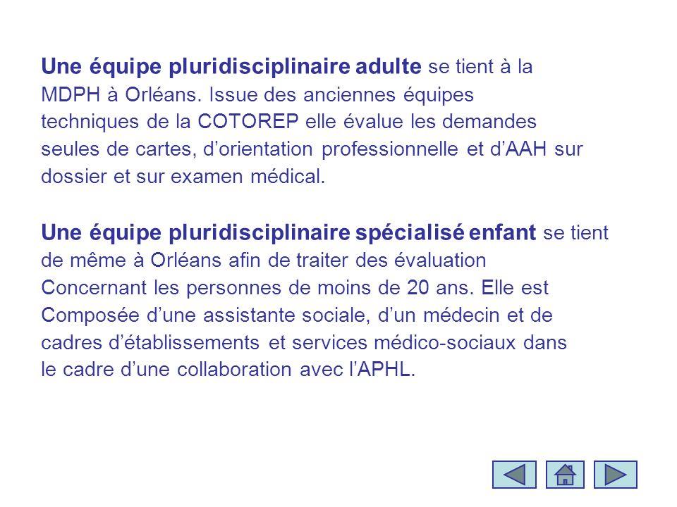 Une équipe pluridisciplinaire adulte se tient à la MDPH à Orléans. Issue des anciennes équipes techniques de la COTOREP elle évalue les demandes seule