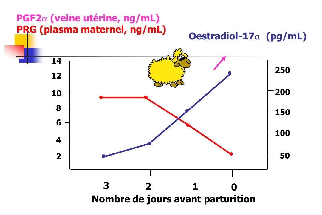 3 21 0 Nombre de jours avant parturition PGF2 (veine utérine, ng/mL) PRG (plasma maternel, ng/mL) 4 6 8 10 12 14 2 250 200 150 100 50 Oestradiol-17 (p