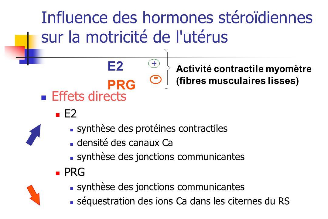 Influence des hormones stéroïdiennes sur la motricité de l'utérus Effets directs E2 synthèse des protéines contractiles densité des canaux Ca synthèse