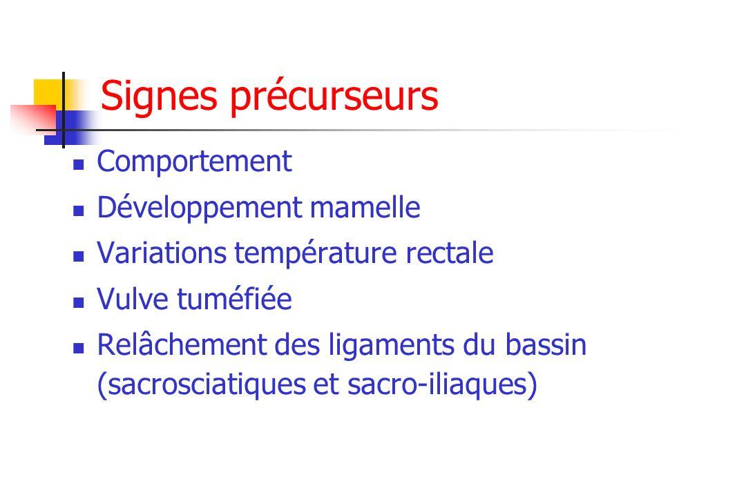 Signes précurseurs Comportement Développement mamelle Variations température rectale Vulve tuméfiée Relâchement des ligaments du bassin (sacrosciatiqu