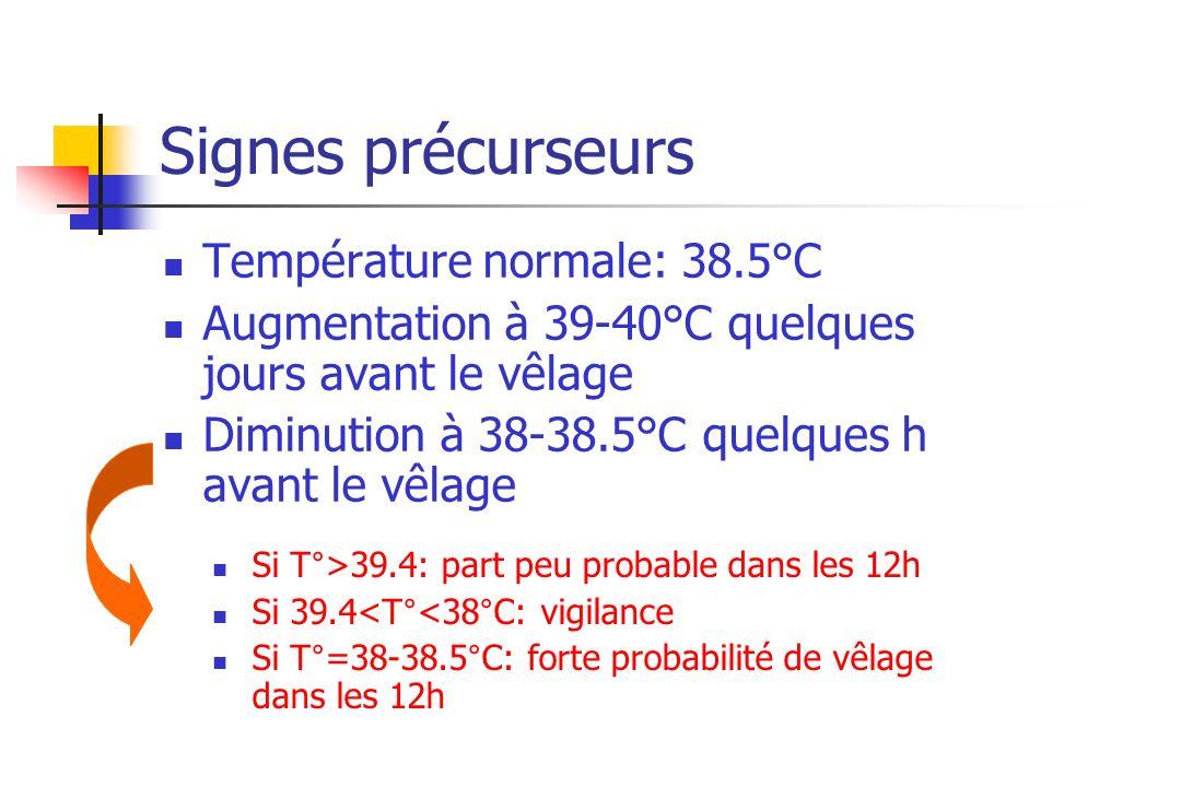 Signes précurseurs Température normale: 38.5°C Augmentation à 39-40°C quelques jours avant le vêlage Diminution à 38-38.5°C quelques h avant le vêlage