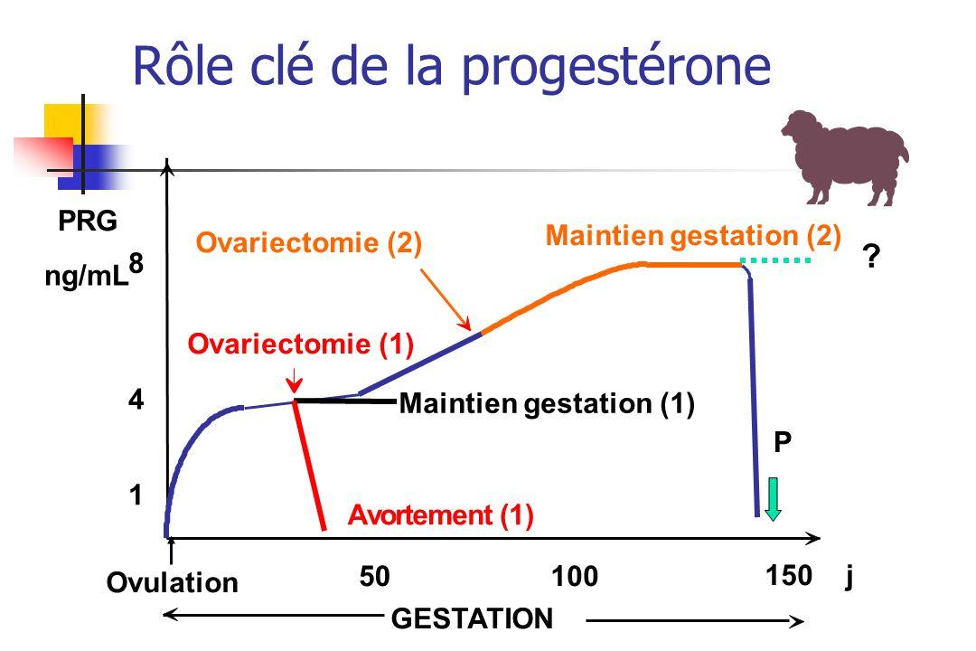 La période post-partum Un retour à une fertilité normale nécessite quelques uns ou lensemble de ces évènements: - -La reprise de la cyclicité ovarienne - -Linvolution utérine: rôle des contractions utérines, expulsion des lochies, réparation de lendomètre - -Larrêt de la production laitière et linvolution de la glande mammaire