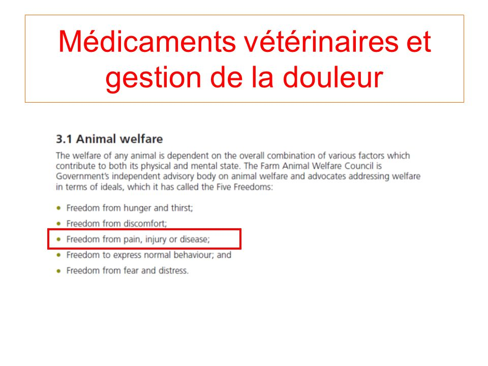 Médicaments vétérinaires et gestion de la douleur