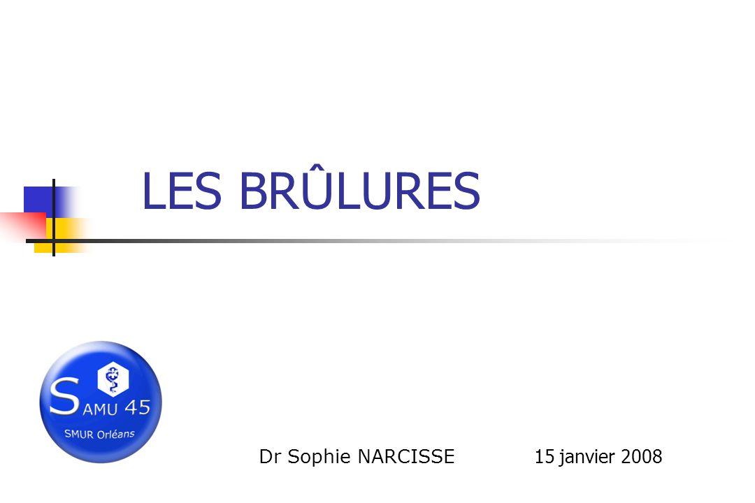LES BR Û LURES Dr Sophie NARCISSE 15 janvier 2008