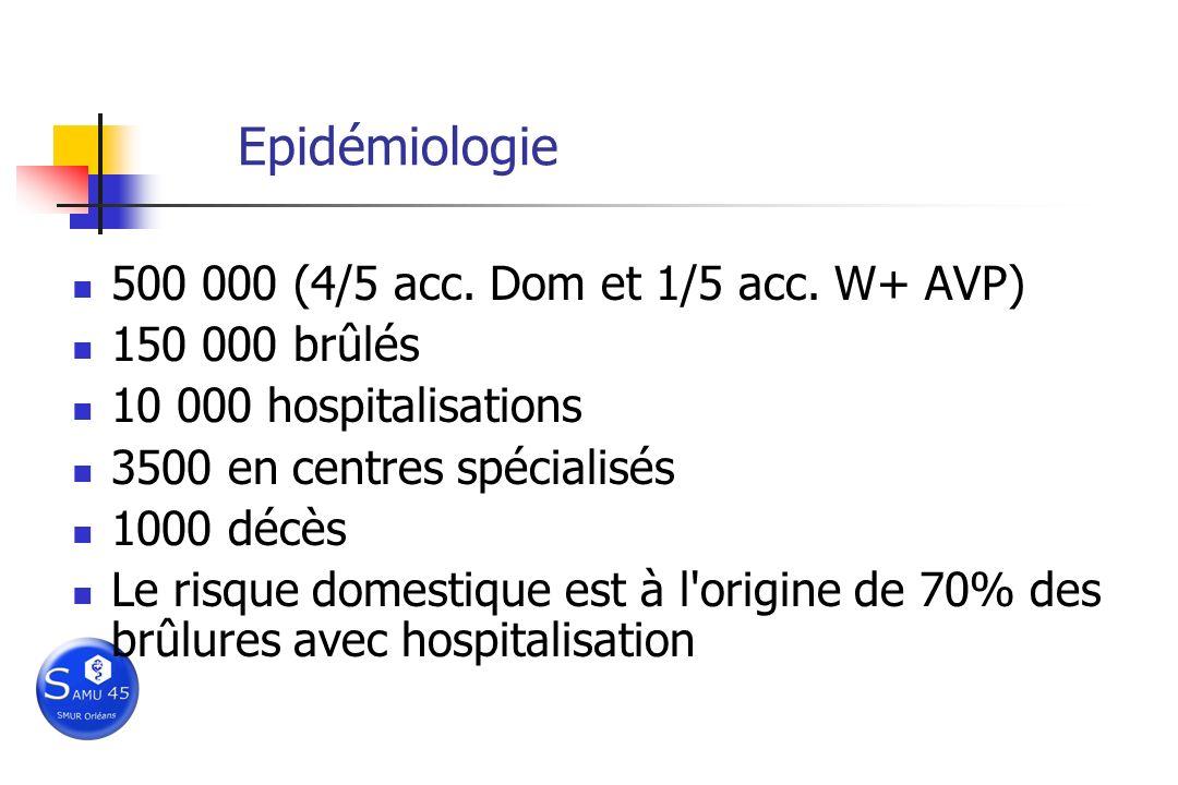 Epidémiologie 500 000 (4/5 acc. Dom et 1/5 acc. W+ AVP) 150 000 brûlés 10 000 hospitalisations 3500 en centres spécialisés 1000 décès Le risque domest