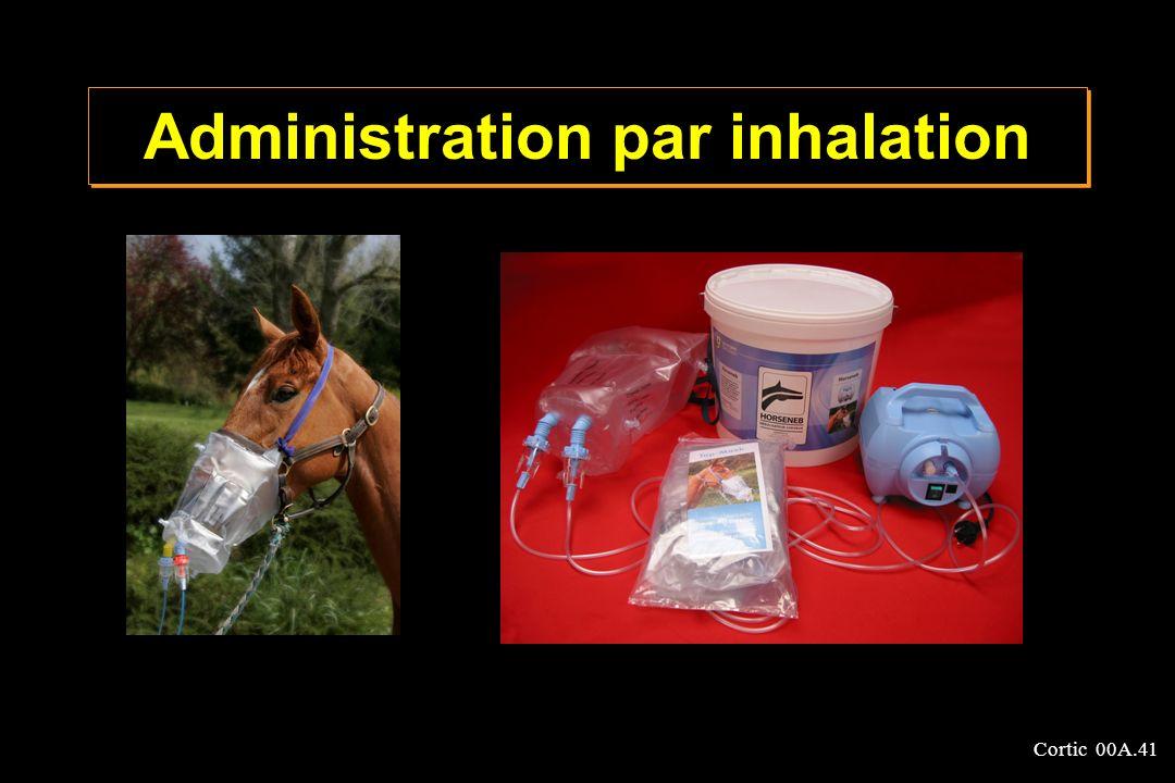 Cortic 00A.41 Administration par inhalation