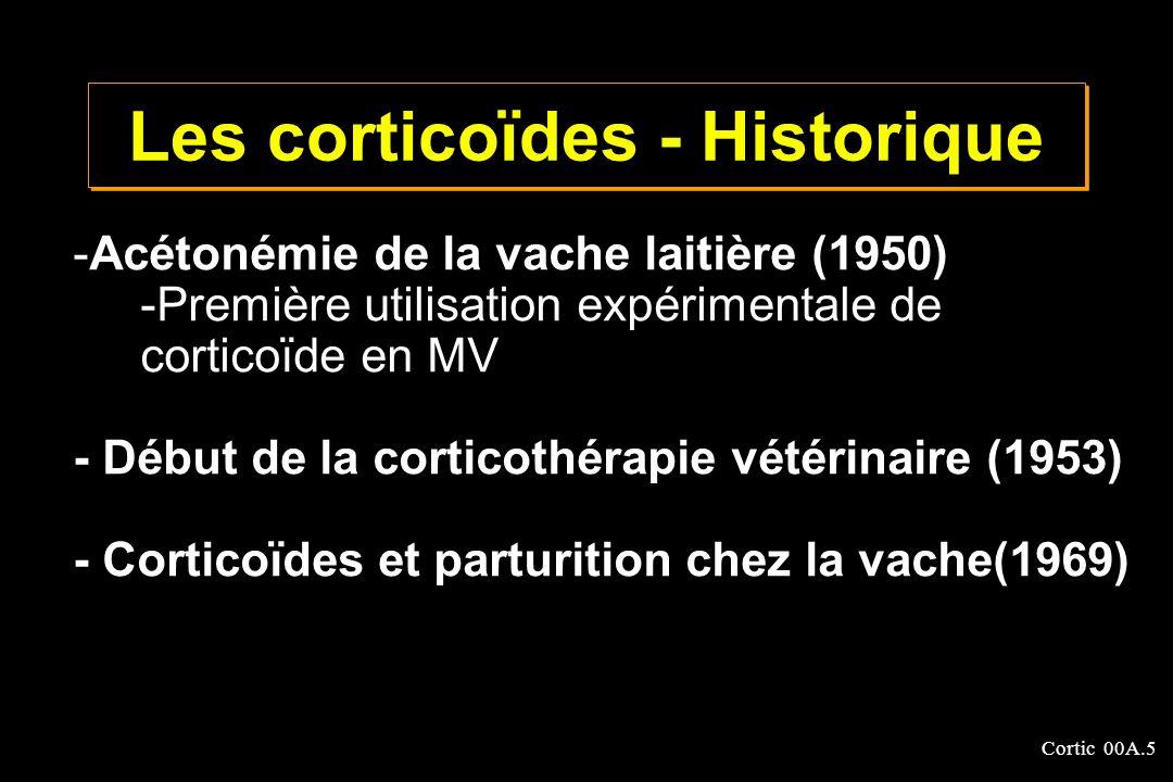 Cortic 00A.66 - Large : Vss : 1 à 3 l / kg - Pas d accumulation préférentielle - Pénétration intracellulaire pour une action sur les récepteurs nucléaires CORTICOIDES - Distribution