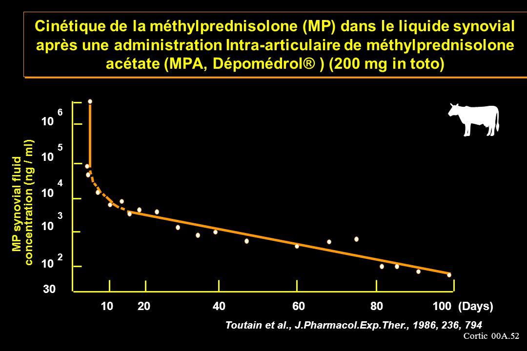 Cortic 00A.52 Cinétique de la méthylprednisolone (MP) dans le liquide synovial après une administration Intra-articulaire de méthylprednisolone acétat