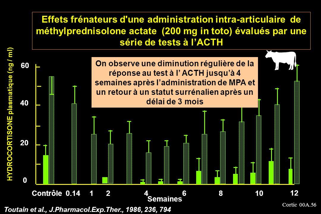 Cortic 00A.56 40 20 Contrôle0.141246 12 HYDROCORTISONE plasmatique (ng / ml) 810 60 0 Semaines Toutain et al., J.Pharmacol.Exp.Ther., 1986, 236, 794 E