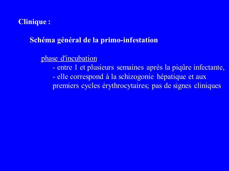 Clinique : Schéma général de la primo-infestation phase d'incubation - entre 1 et plusieurs semaines après la piqûre infectante, - elle correspond à l