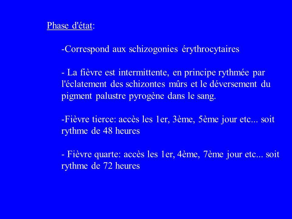 Phase d'état: -Correspond aux schizogonies érythrocytaires - La fièvre est intermittente, en principe rythmée par l'éclatement des schizontes mûrs et