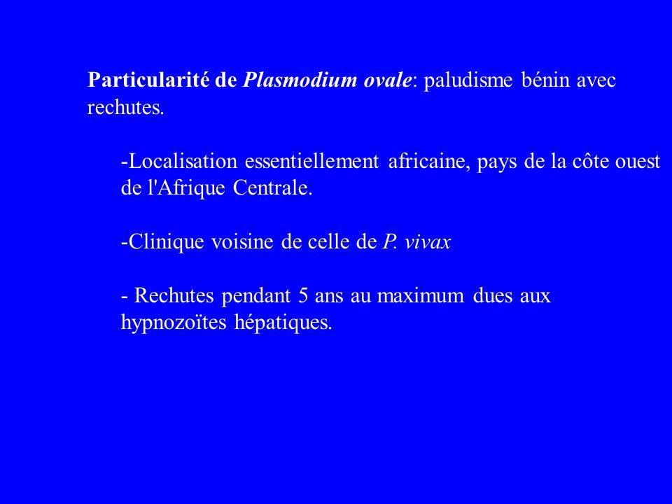 Particularité de Plasmodium ovale: paludisme bénin avec rechutes. -Localisation essentiellement africaine, pays de la côte ouest de l'Afrique Centrale
