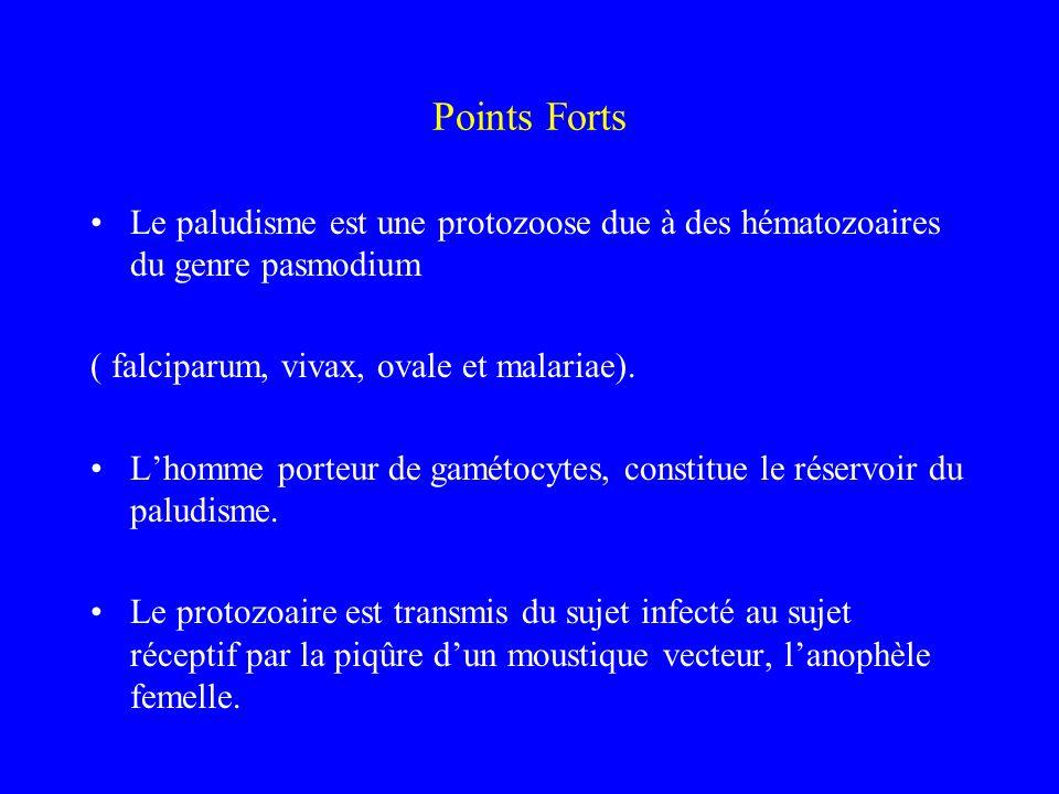 Points Forts Le paludisme est une protozoose due à des hématozoaires du genre pasmodium ( falciparum, vivax, ovale et malariae). Lhomme porteur de gam