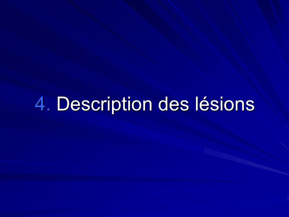 4. Description des lésions