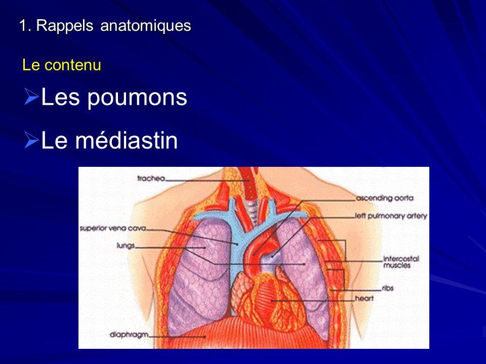 1. Rappels anatomiques Le contenu Les poumons Le médiastin