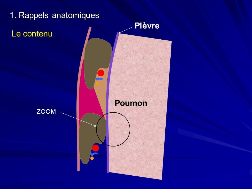 1. Rappels anatomiques Le contenu Plèvre Poumon ZOOM