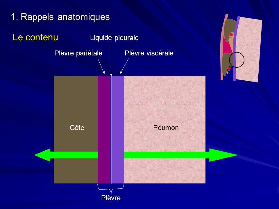 1. Rappels anatomiques Le contenu Côte Plèvre pariétalePlèvre viscérale Liquide pleurale Plèvre Poumon